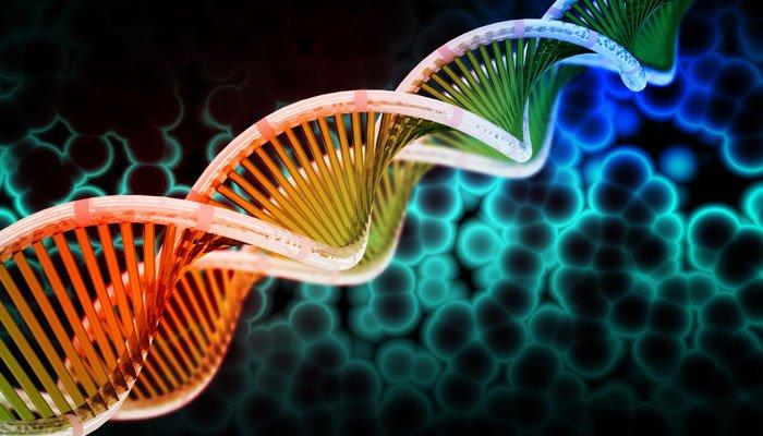 ALS gene variant story