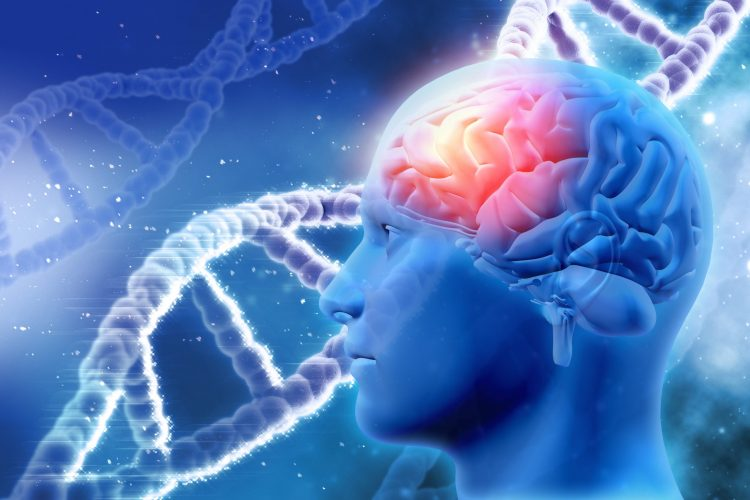 stand of DNA behing a side on view of the human head with the brain highlighted in red