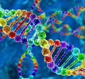 Cas9 enzyme CRISPR