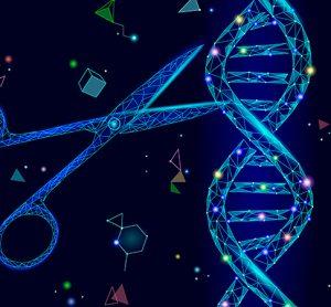 CRISPR and stem cells