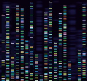 genetic sequences
