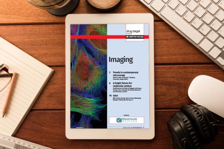 Imaging In-Depth Focus 2015