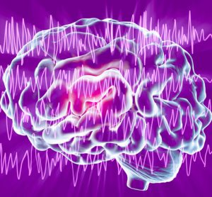New therapy stops seizures in mouse model of rare childhood epilepsy
