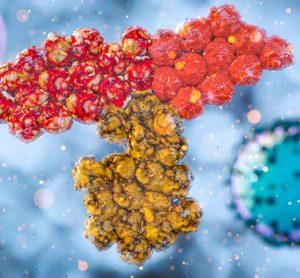 SARS-CoV-2 antibodies
