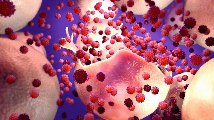 red viruses pouring out of pink human cell