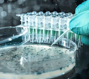 AmpliPhi Biosciences announces financial results Q2 2015