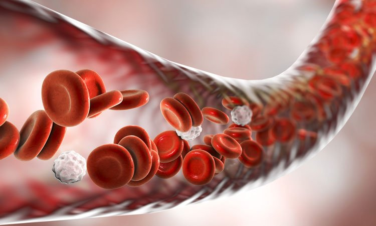 imaging technique for labelling blood cells