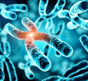 New analytical method provides an insight into additional chromosomes