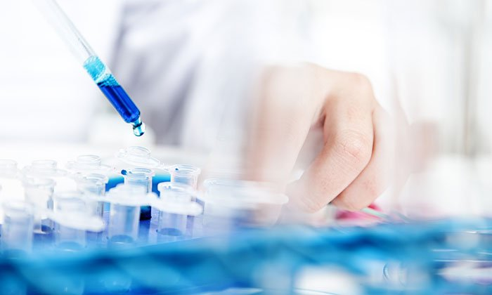 Disease focused foundations Q&A