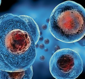 Scientists generate an atlas of the human genome using stem cells