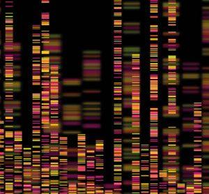 genetic imaging