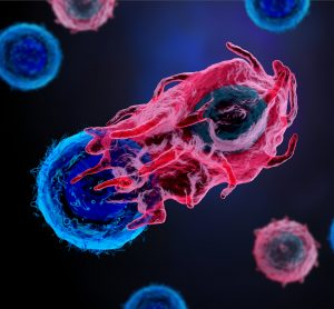 red immune cell attacking a blue cancer cell on a dark blue background