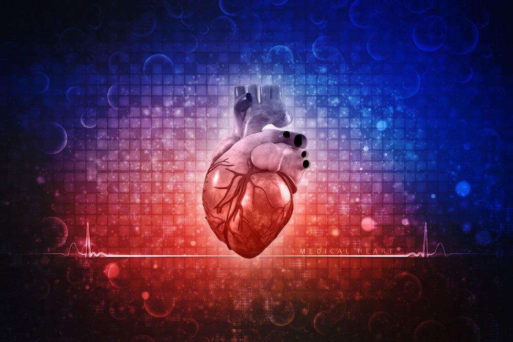 lipotoxic cardiomyopathy