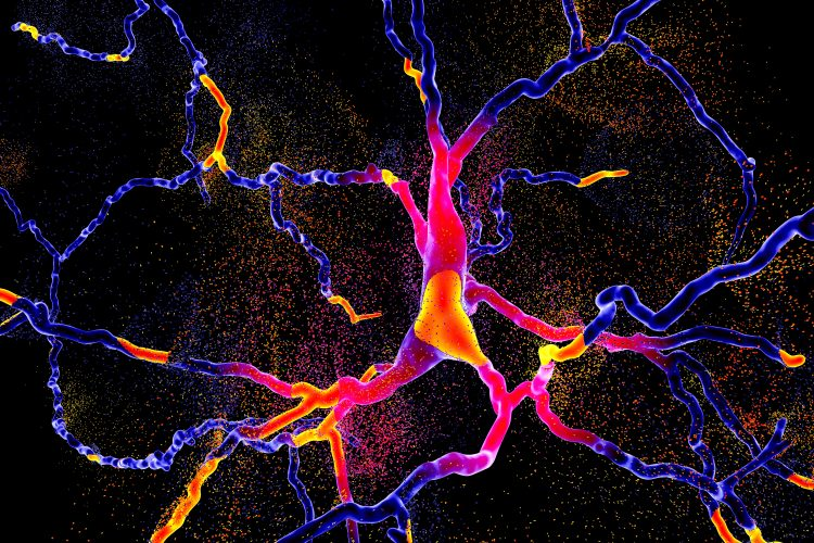 brighly coloured neuron degenerating-neurodegeneration