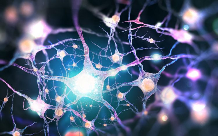 purple neurons with white 'signals' running along them