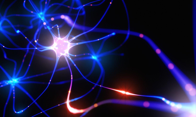method neuronal
