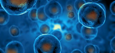 stem cells with blue background
