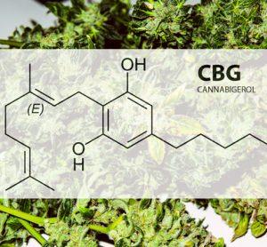 Cannabigerol chemical formula