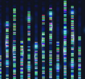 Genetic screen results