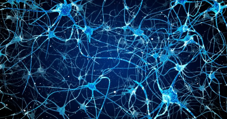 Neurons in the brain - n-Tr20 disruption