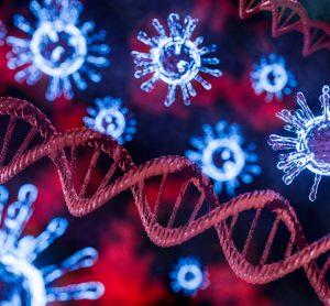 SARS-CoV-2 genome
