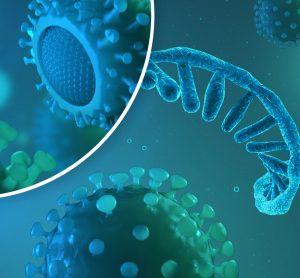 SARS-CoV-2 genetics
