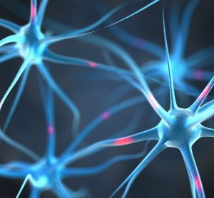 Neurons in brain with Parkinson's