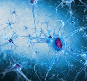Human protein may aid neuron invasion by virus that causes hand, foot, and mouth disease