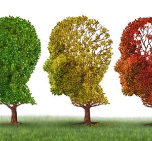 Two new genes linked to Alzheimer's risk