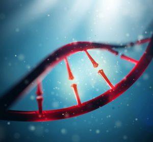 Phenogenetic