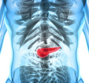 Pancreatic cancer: specific protein promotes development of pancreatitis and tumours