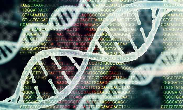 Using bioinformatics sequence similarities to optimise repurposing activities