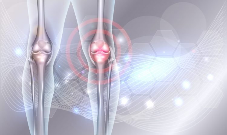 Biomaterial used for bone regeneration