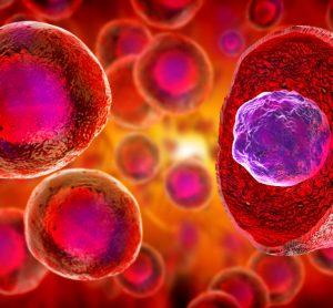 3D artist image of stem cells